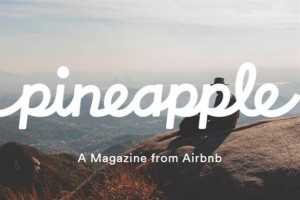pineapple airbnb