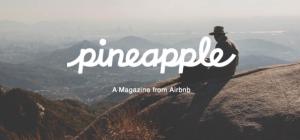 Airbnb Magazine Pineapple